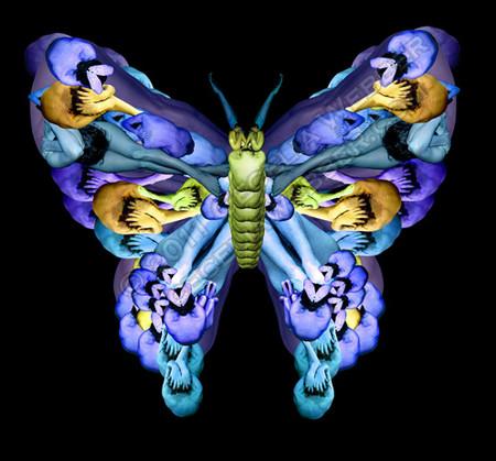 Сесилия Уэббер: Люди – это бабочки! — фото 1