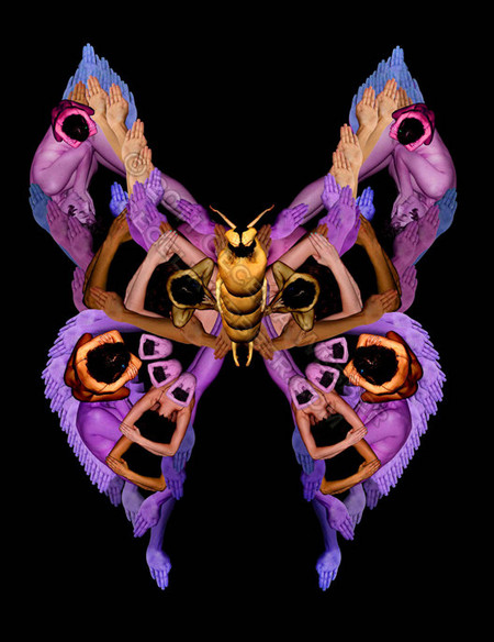 Сесилия Уэббер: Люди – это бабочки! — фото 2