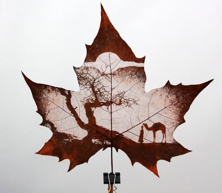 Листья клена как полотна для живописи — фото 6
