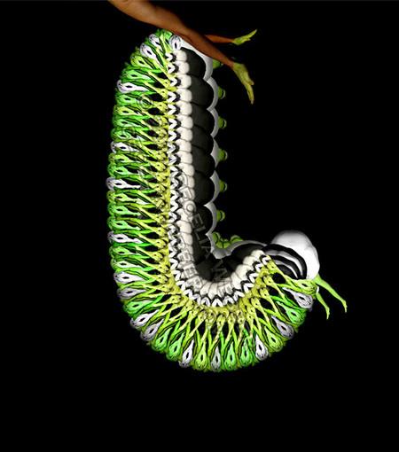 Сесилия Уэббер: Люди – это бабочки! — фото 5