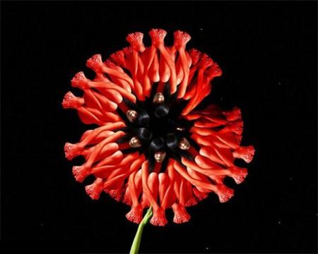 Сесилия Уэббер: Люди – это цветы! — фото 4
