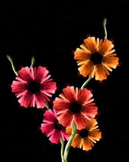 Сесилия Уэббер: Люди – это цветы! — фото 5