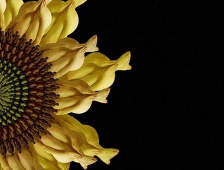 Сесилия Уэббер: Люди – это цветы! — фото 11