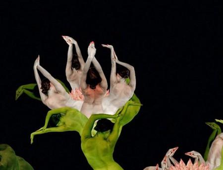 Сесилия Уэббер: Люди – это цветы! — фото 6