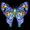 Сесилия Уэббер: Люди – это бабочки!