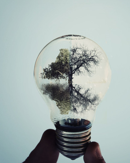 Волшебные лампочки на фотографиях Адриана Лимани — фото 12
