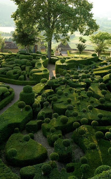 Браво фантазии садоводов!