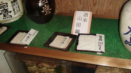 Рис подходит не весь. Из 200 существующих сортов для саке японцы используют только 28