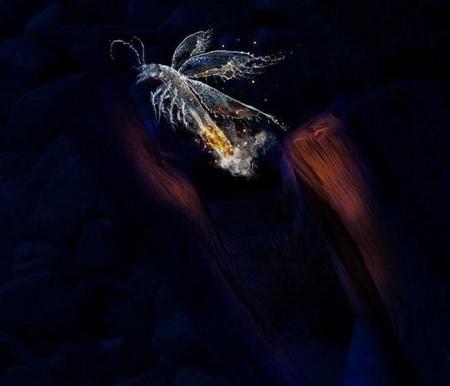 «Цифровая вода» - фотофантазии В_О_К_Е — фото 2