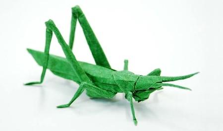 Брайан Чен – мастер самого реалистичного оригами — фото 9