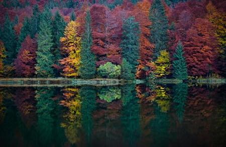 Осень умеет уходить красиво. 55 причин полюбить осень — фото 18