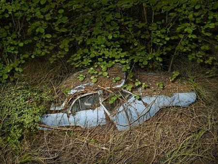 Парковка в раю – работы Питера Липпмана — фото 6