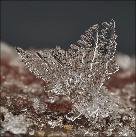 Андрей Осокин – фотограф, которому позируют снежинки — фото 37