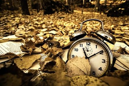 Осень умеет уходить красиво. 55 причин полюбить осень — фото 34