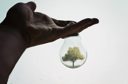 Волшебные лампочки на фотографиях Адриана Лимани — фото 26