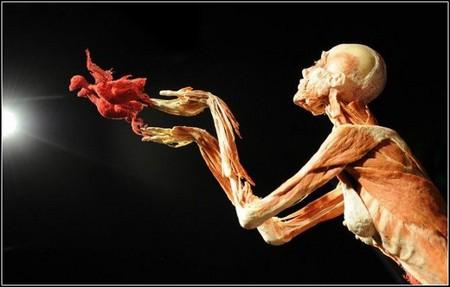 «Доктор Смерть» и его Музей Трупов — фото 6