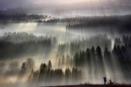 Туманные пейзажи на красивых снимках Богуслава Стремпеля — фото 2