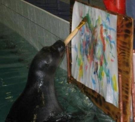 Морские котики тоже. Умницы!