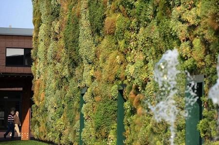 Вертикальный сад – рекордсмен — фото 6