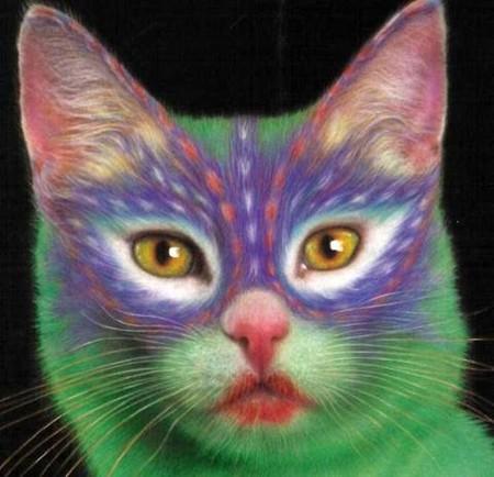 Что такое котопейнт, или «Раскрась кота!» — фото 20