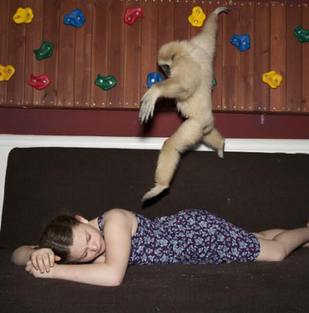 Фотопроект Amelia's world – животные в мире одной девочки — фото 11