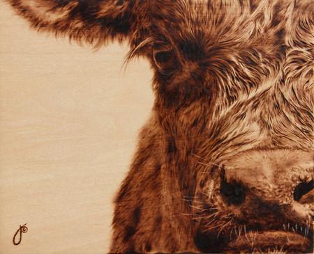 Пирография – горячая живопись Джулии Бендер — фото 13