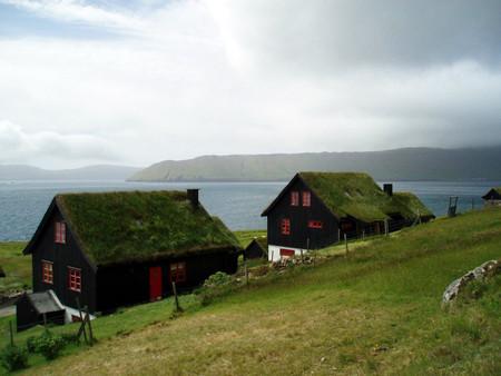 Трава на крышах — для звукоизоляции. Дожди там идут часто.