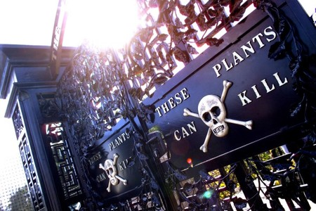 Добро пожаловать! Эти растения убивают! )))