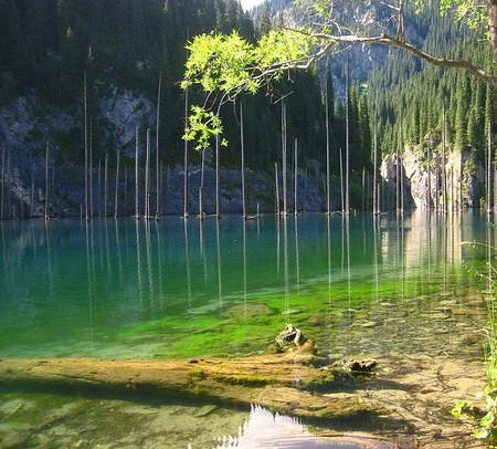 Чистейшая бирюзовая вода, подводный лес, запах хвои… Тут можно по-настоящему отдохнуть.