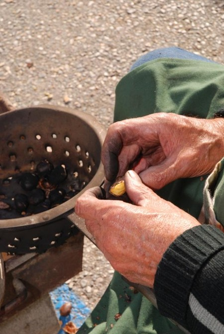 Шкурка счищается, ядро съедается — как у ореха