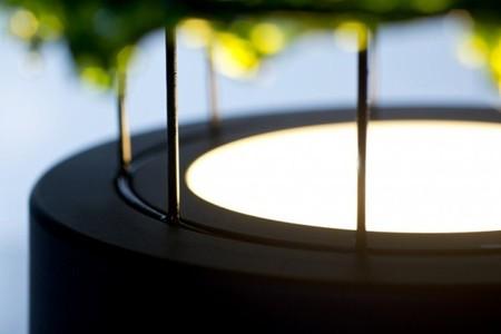 Экологично + технологично = лампа из морских водорослей — фото 5