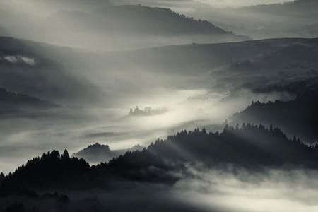 Туманные пейзажи на красивых снимках Богуслава Стремпеля — фото 15