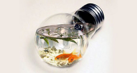 Аквариум – не только домик для рыб. Необычные и разные, маленькие и огромные аквариумы – солисты в интерьере — фото 21