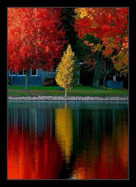 Осень умеет уходить красиво. 55 причин полюбить осень — фото 12