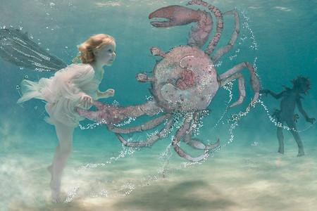 Zena Hollоway – редкий подводный фотограф — фото 19