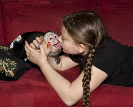 Фотопроект Amelia's world – животные в мире одной девочки — фото 5