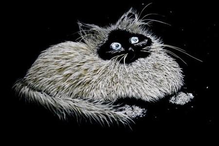 Портрет одного из котов Елены, помогающих в обработке материалов для ее картин