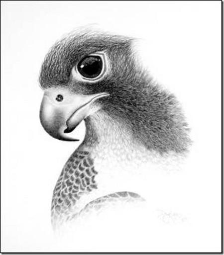 Рисунки карандашом … но не руками. Дуг Лэндис (Doug Landis) – необычный художник. — фото 5