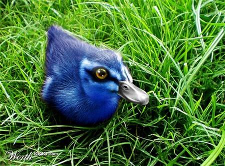 Что, если мир станет более … голубым? Красивый фотошоп — фото 53