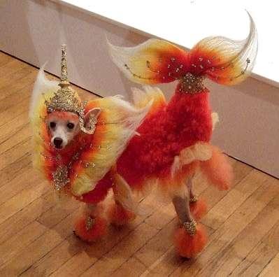 Собачий арт в работах Рена Низерленда — фото 2