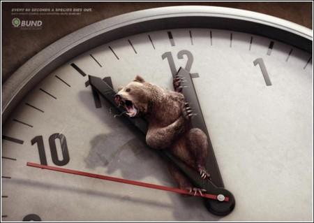 Минута до вымирания ...
