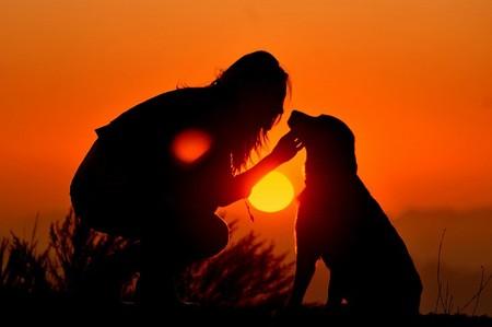 Силуэты в закатах и рассветах – снимки Ти Джея Скотта — фото 2