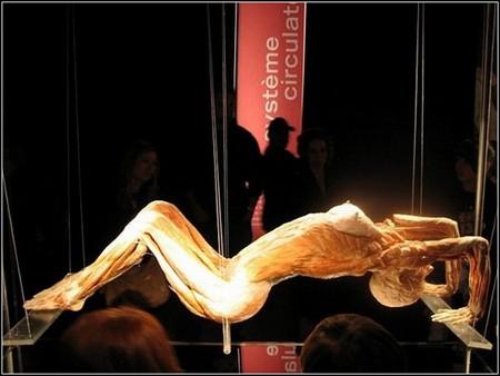 «Доктор Смерть» и его Музей Трупов — фото 7
