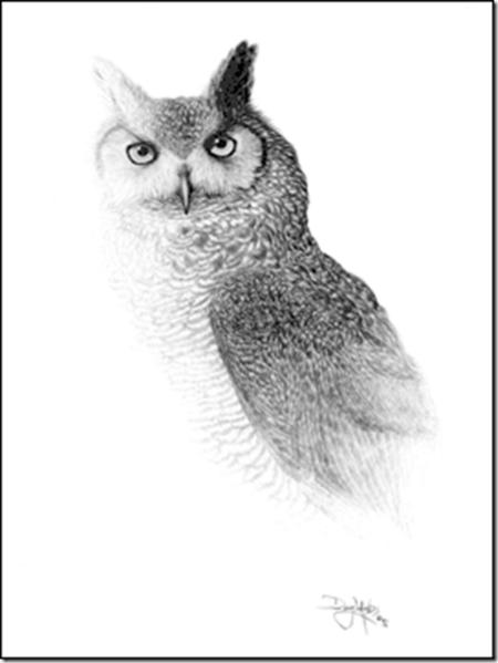 Рисунки карандашом … но не руками. Дуг Лэндис (Doug Landis) – необычный художник. — фото 6