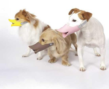 Клювы для собак – японское изобретение Quack Muzzle — фото 6