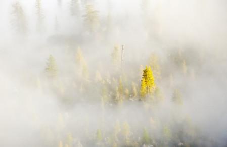 Осень умеет уходить красиво. 55 причин полюбить осень — фото 44