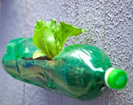 Вертикальные сады-огороды в бутылках — фото 8