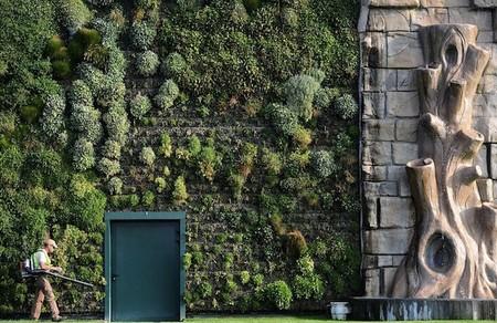 Вертикальный сад – рекордсмен — фото 7