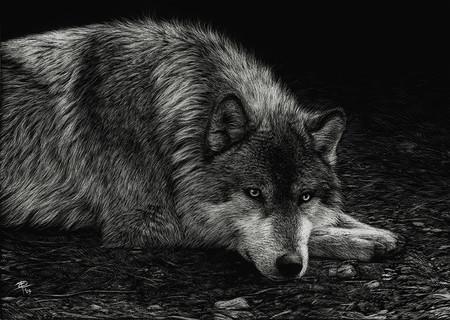 Картины в технике скрэтчборд от Кристины Пенеску — фото 16