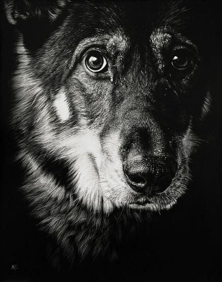 Собаки — еще одна из любимых тем